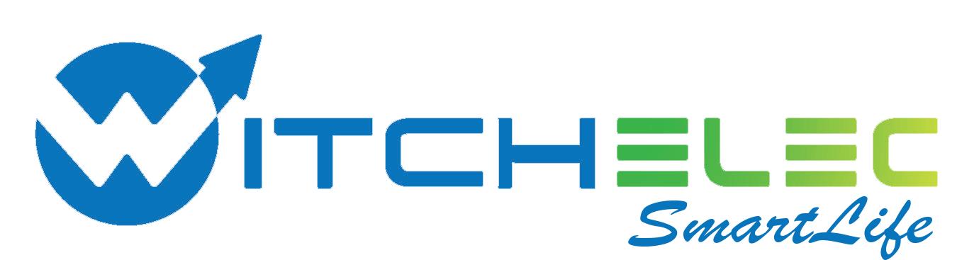 WitchElec ไฟประดับงาน ไฟกระพริบ หรือไฟตกแต่ง LED