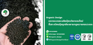 Organic Design รับผลิตปุ๋ยอินทรีย์ ผลิตปุ๋ยอินทรีย์เคมี